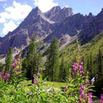 Dolomiti in Trentino