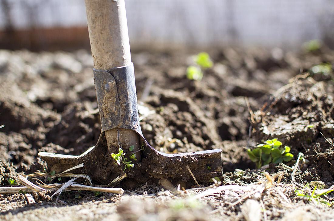 Gli attrezzi agricoli manuali utili al lavoro nei campi o nel giardinaggio