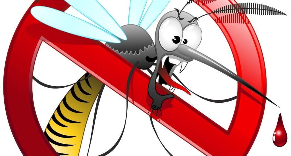 Fai da te per eliminare le zanzare in modo efficace