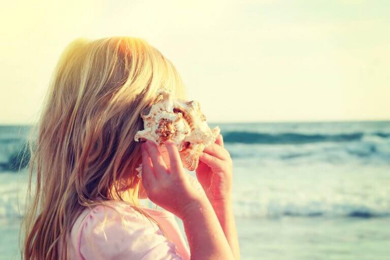 Perché sentiamo il rumore del mare nelle conchiglie?