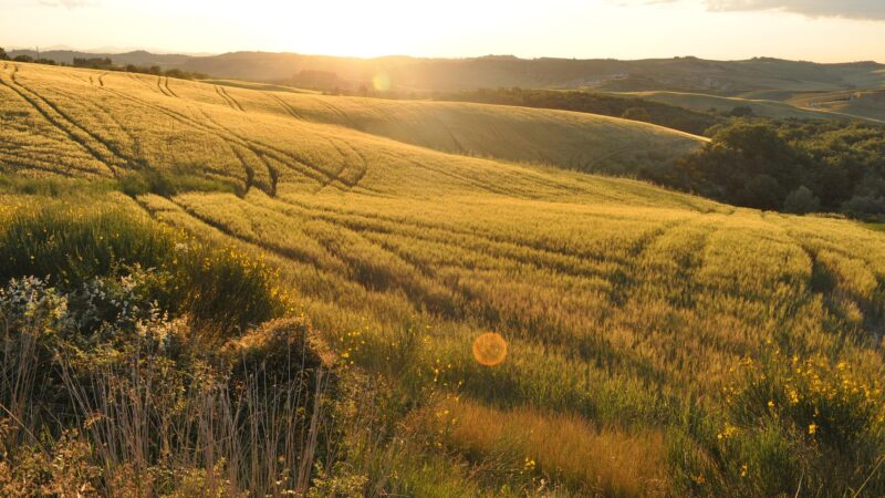 Toscana e Chianti – Tra vino e terme
