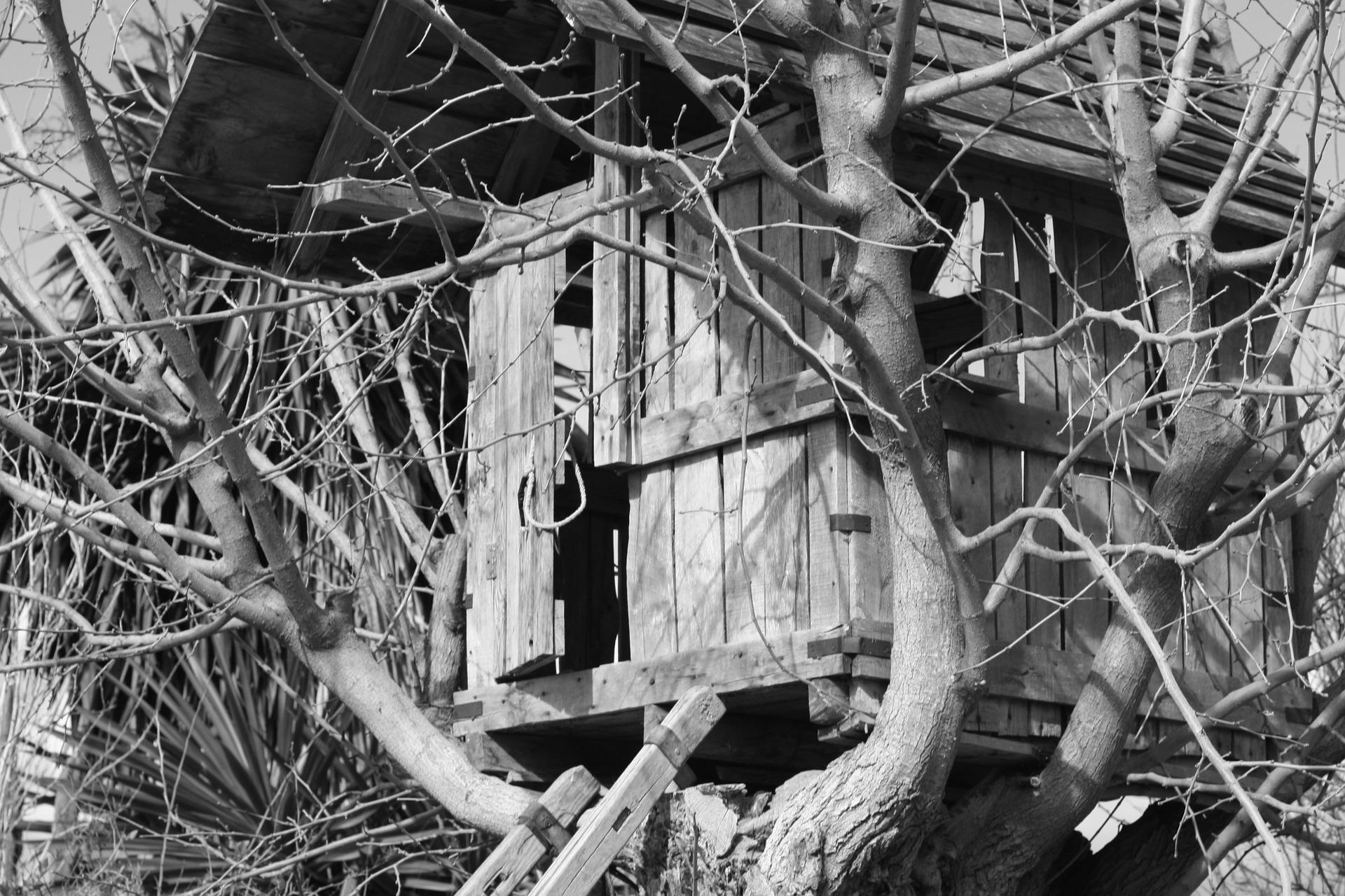 Consigli su come costruire una casa sull'albero